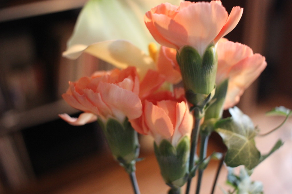 BloomeeLIFE(ブルーミーライフ)から届いた鼻の画像