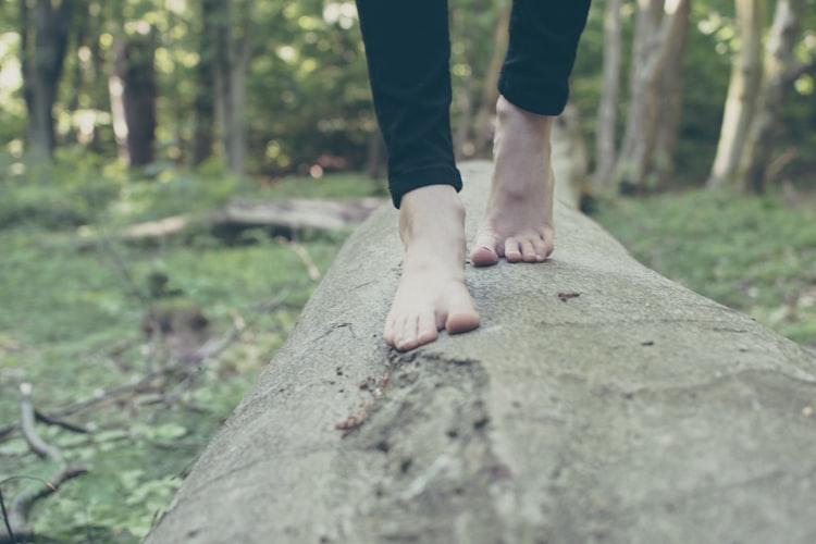 木の上を歩く女性の画像