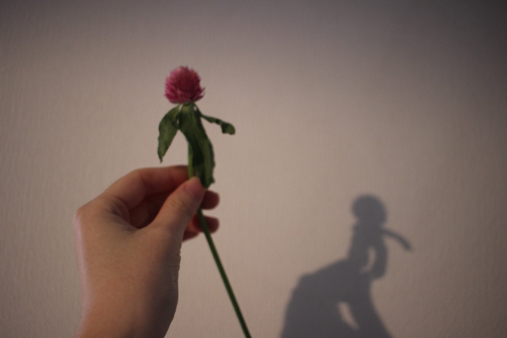 BloomeeLIFEブルーミーライフからしおれて届いてしまったお花の写真