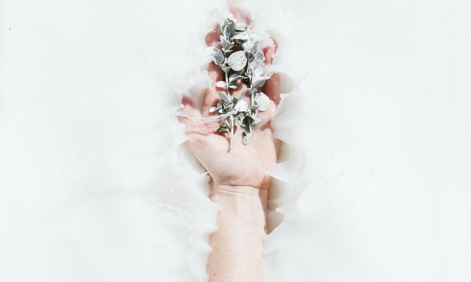 手と花の画像