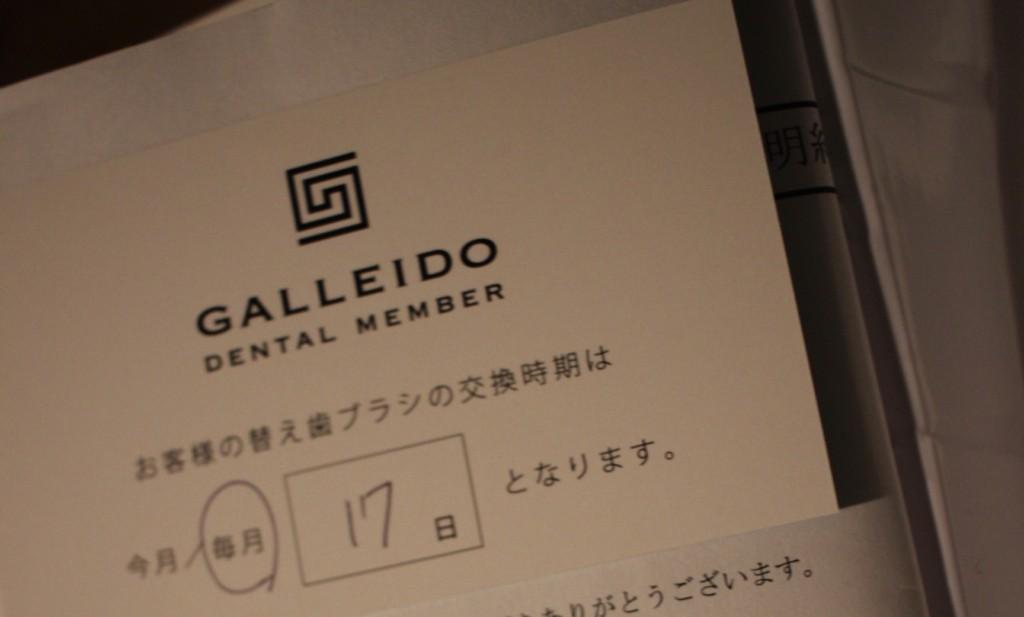 GALLEIDO DENTAL MEMBER(ガレイドデジタルメンバー)の中身