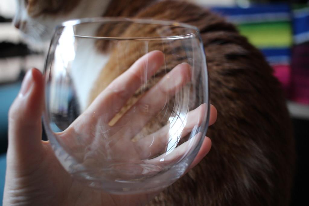 ダイソーで購入できる薄グラスの画像