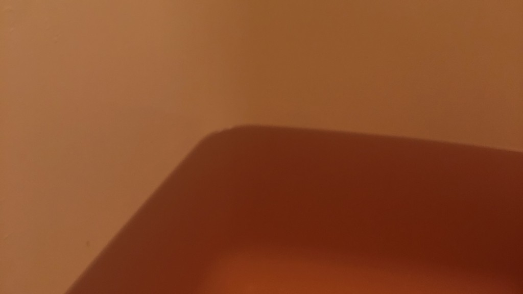 ローズドゥフトボルケを入れたお湯の画像