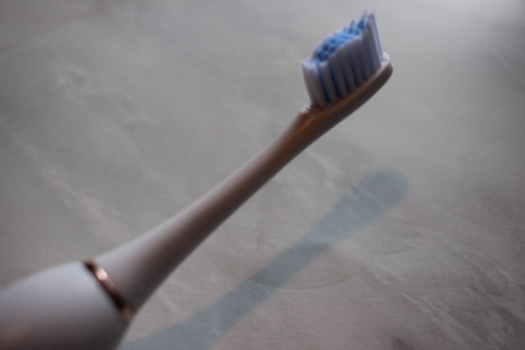 歯ブラシのサブスクリプションを3ヶ月使って感じたブラシが大きいデメリット