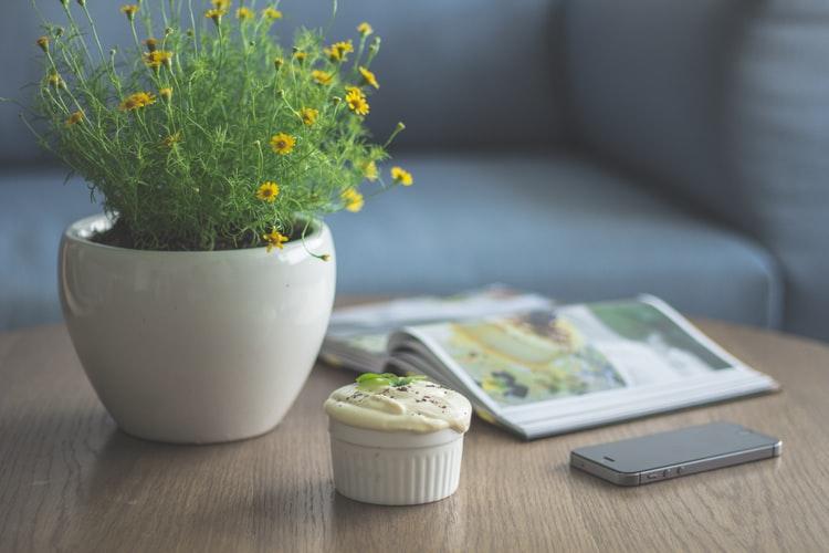 Bloomee LIFEから届いた花を長持ちさせる方法