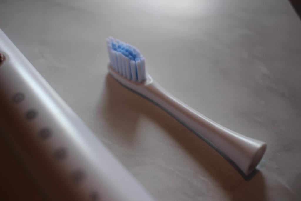 歯ブラシのサブスクリプション「ガレイドデンタルメンバー」から届いた歯ブラシ