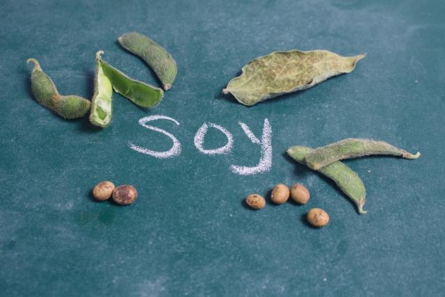 枝豆と大豆それぞれの栄養と効果を知って、自分にあったものを取り入れてみて♪