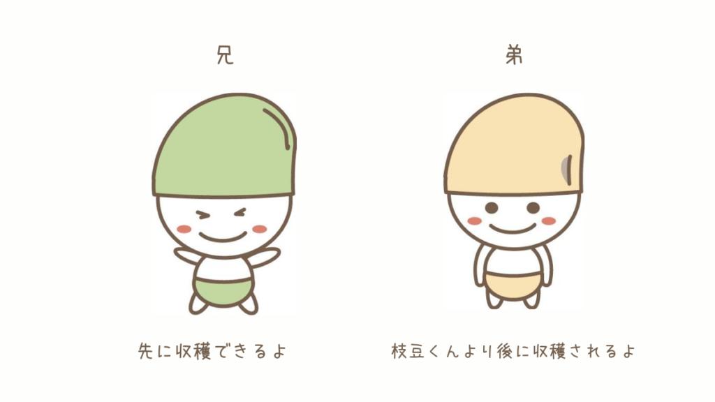 枝豆と大豆の違い